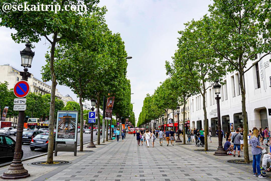 パリのシャンゼリゼ通り(Avenue des Champs-Élysées)