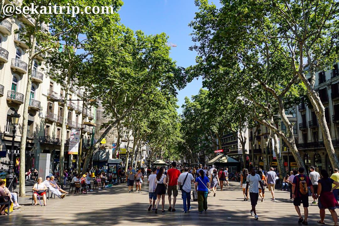 スペイン・バルセロナのランブラス通り(La Rambla)