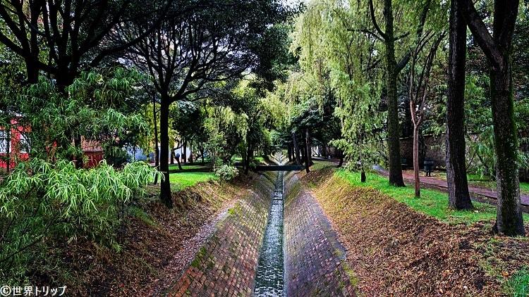 新市街側の林道