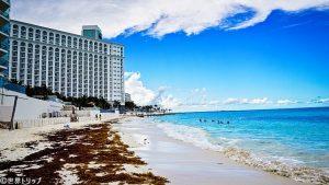 ホテル・リウ・パレス・ラス・アメリカス近くのビーチ