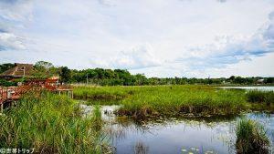 コバ遺跡近くのコバ湖(Laguna Cobá)
