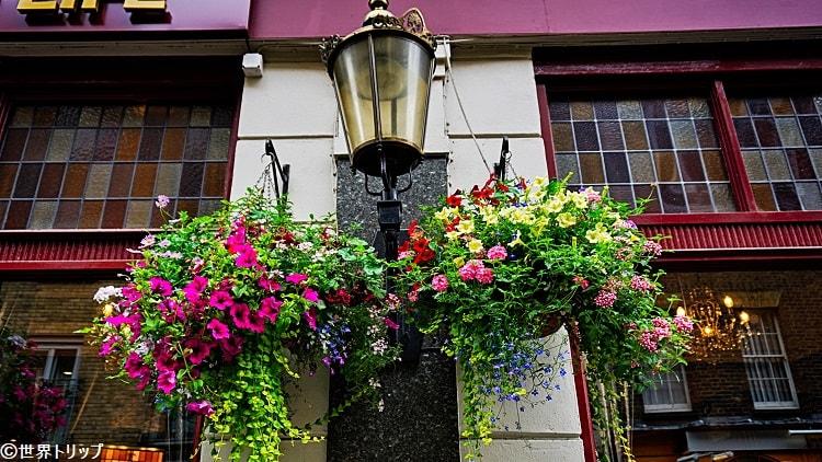 ソーホーを彩る花