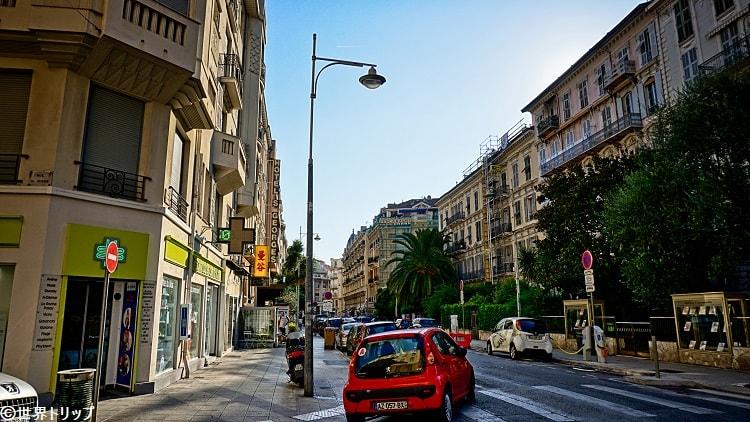 ジョルジュ・クレマンソー通り(Avenue Georges Clemenceau)