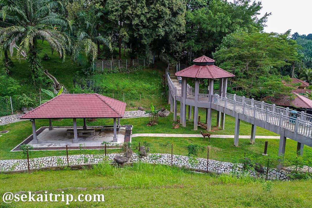 レイク・ガーデン・パーク(Perdana Botanical Garden)