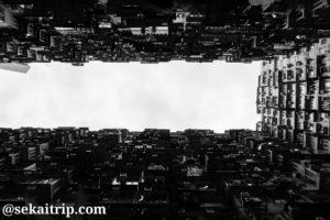 海山楼から空を見上げる