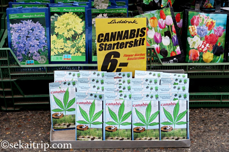 アムステルダムの花市場で売られていた大麻栽培セット