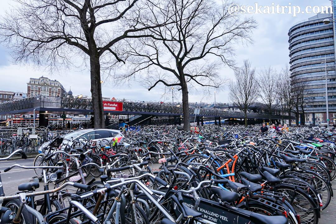 アムステルダム中央駅の駐輪場