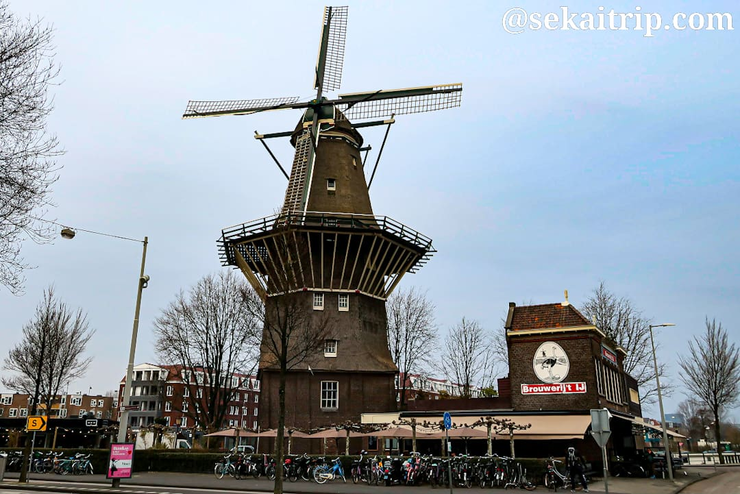 アムステルダムのデ・ゴーヤー(De Gooyer)