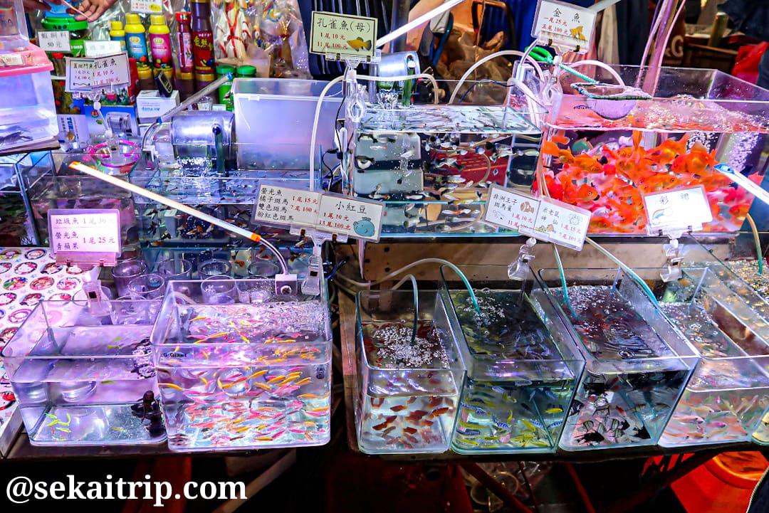 台北の饒河街観光夜市(金魚等を販売する屋台)