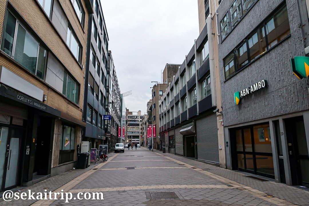 ホーフェニールス通り(Hoveniersstraat)