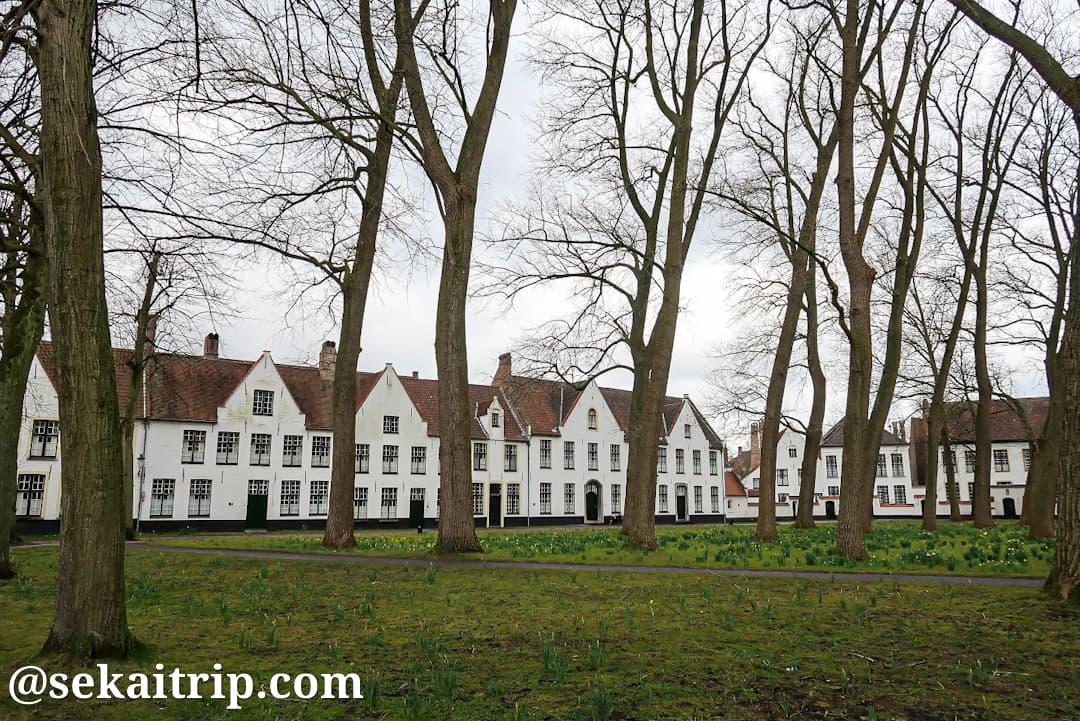 ブルージュのベギン会修道院(Begijnhof van Brugge)