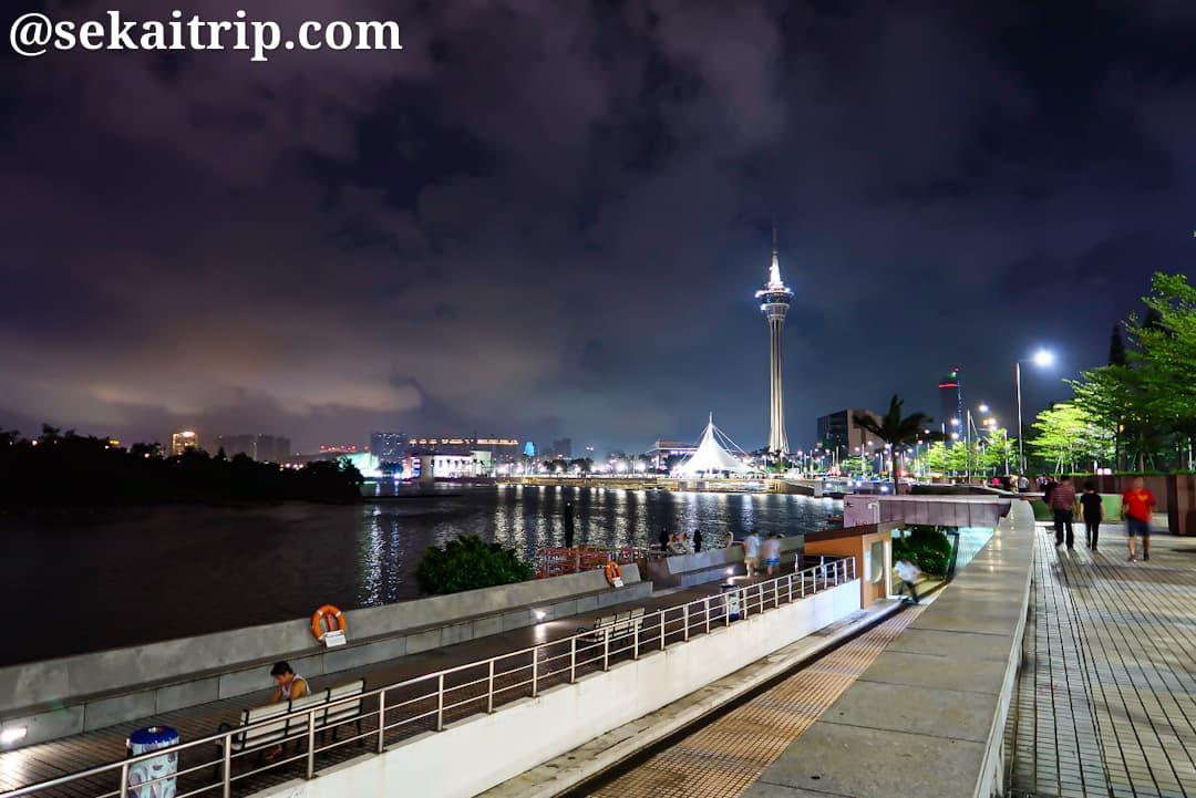 夜の南灣湖の遊歩道