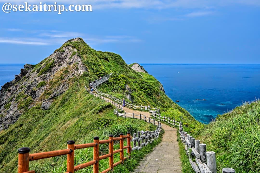 神威岬先端へ向かう道