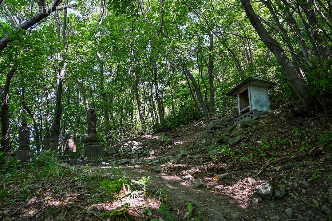 尻場山の登山道(ここから滑りやすくなる)