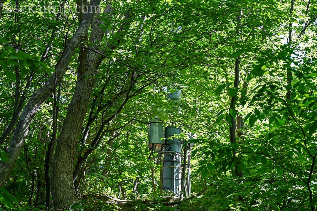 尻場山の登山道(目印の携帯関係?の塔)