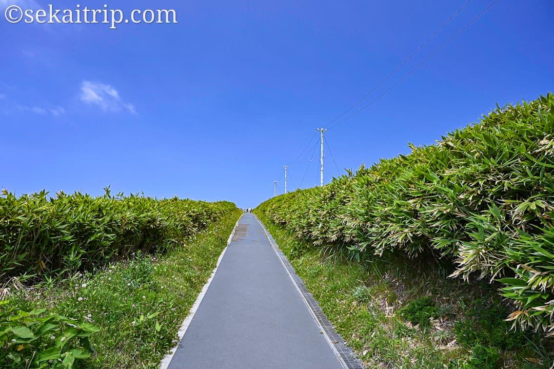 神威岬へ向かう道